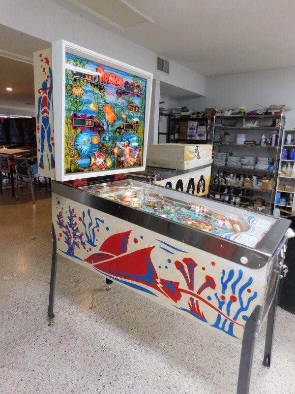 Pinball Restorations, Stern Stingray